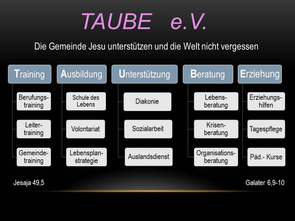TAUBE-Vision